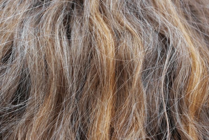 Die Brennnessel und die Henna die Maske für das Haar