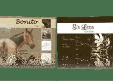 Tipps und Tricks für Visitenkarten 2